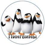 Команда «Пингвины»